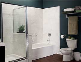 Tub & Shower Photo 4