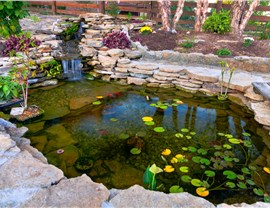 Water Features - Koi Ponds Photo 2
