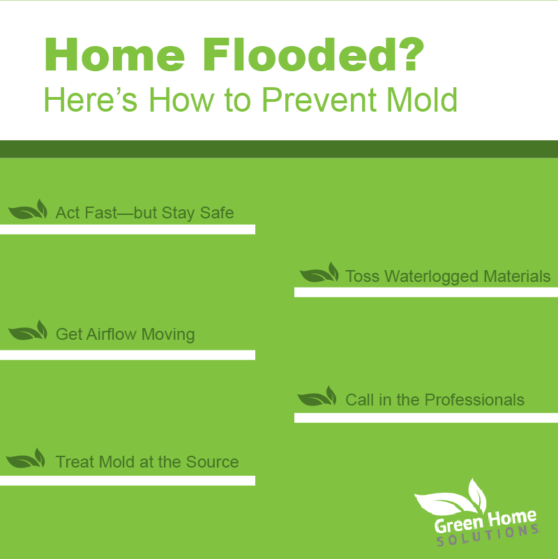 Mold Prevention After Your Home Floods