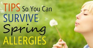 Ah --- Spring and Allergens are in the Air--Here are a Few Practical Tips to Control Allergens