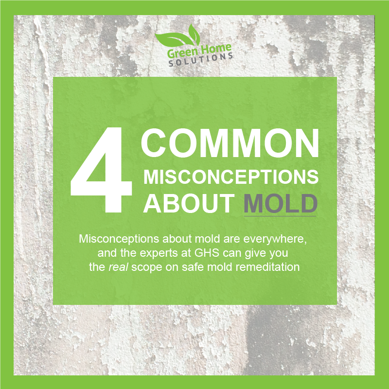 Common Mold Misconceptions