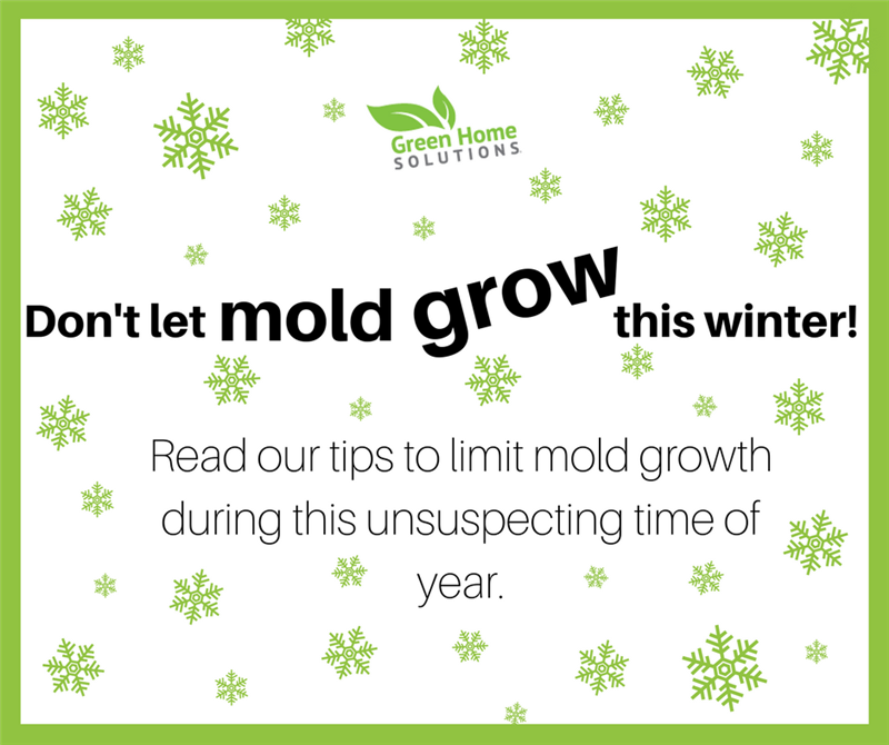 11 Tips to Limit Mold Growth This Winter