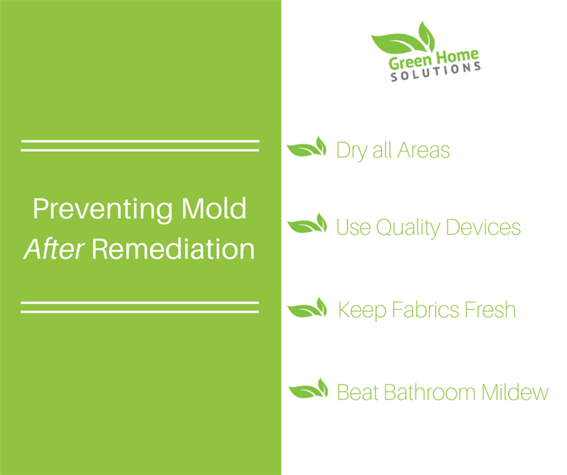 Tips for Preventing Mold After Remediation