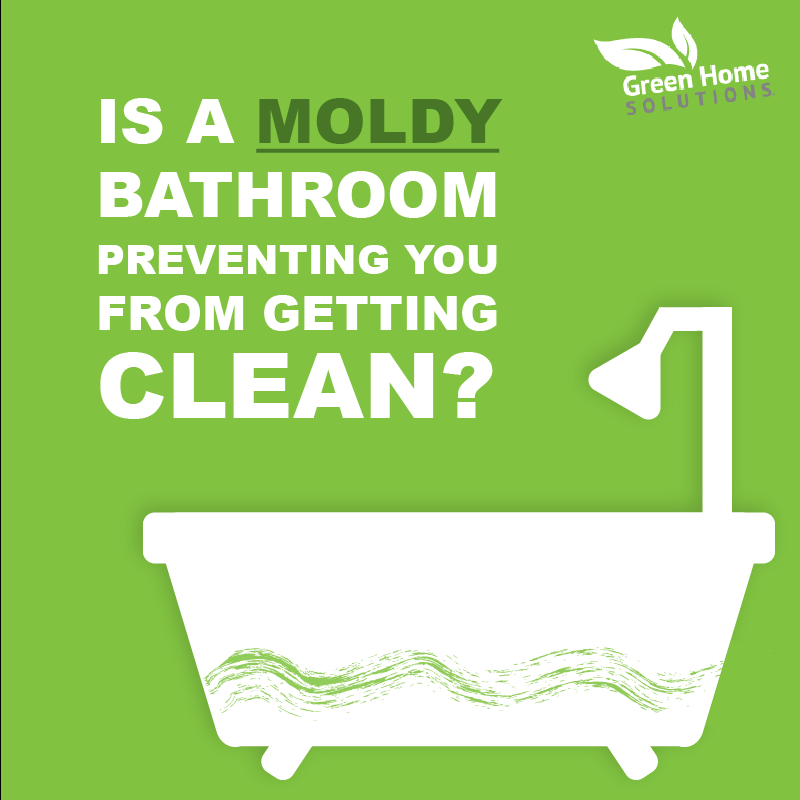 Is a Moldy Bathroom Preventing You From Getting Clean?