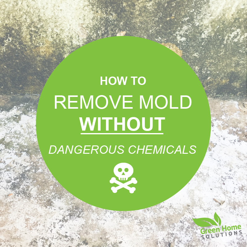 Removing Mold without Dangerous Chemicals