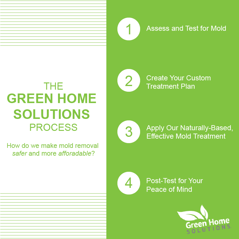 The Green Home Process