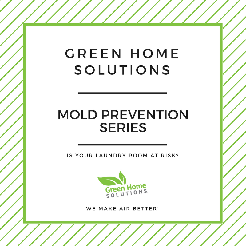 Preventing Mold in the Laundry Room