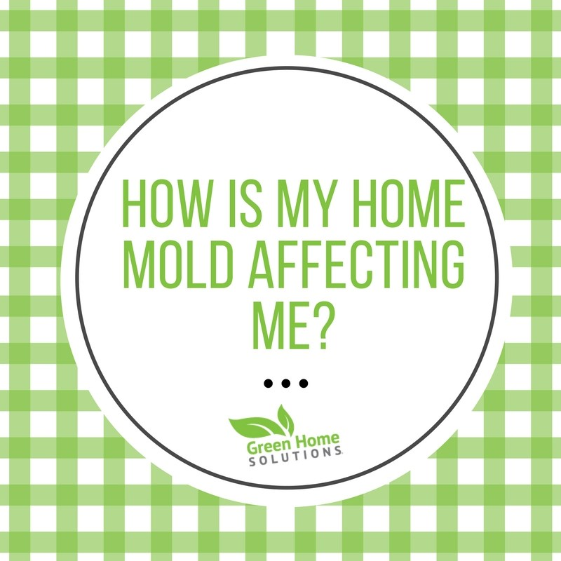 What is My Home Mold Doing to Me?