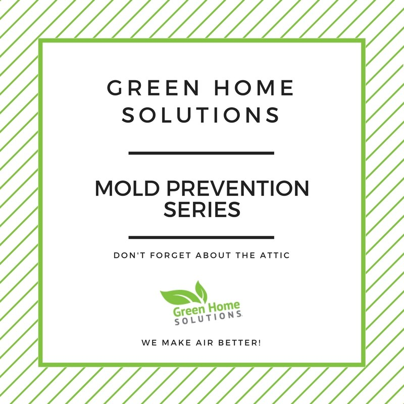 Tips for Preventing Mold in the Attic