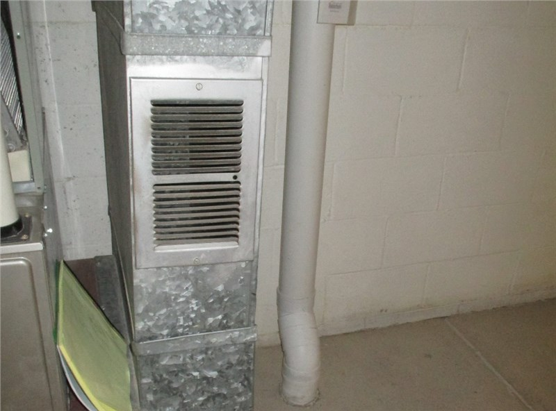 Basement (and Attic and Crawlspace) Mold Can Make Its Way Through Your Home
