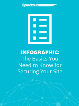 The Basics You Need to Know for Securing Your Site