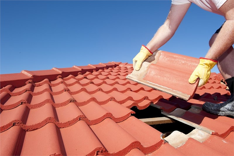 What Should Your Roof Maintenance Look Like?