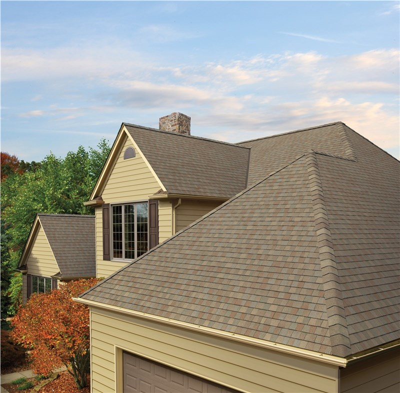 Top Roofing Style in 2019